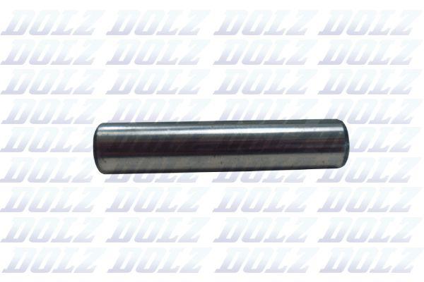 DOLZ Waterpomp (B224T)
